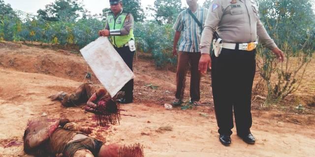 Pembacokan Di Mesuji Lampung, Tiga Orang Tewas