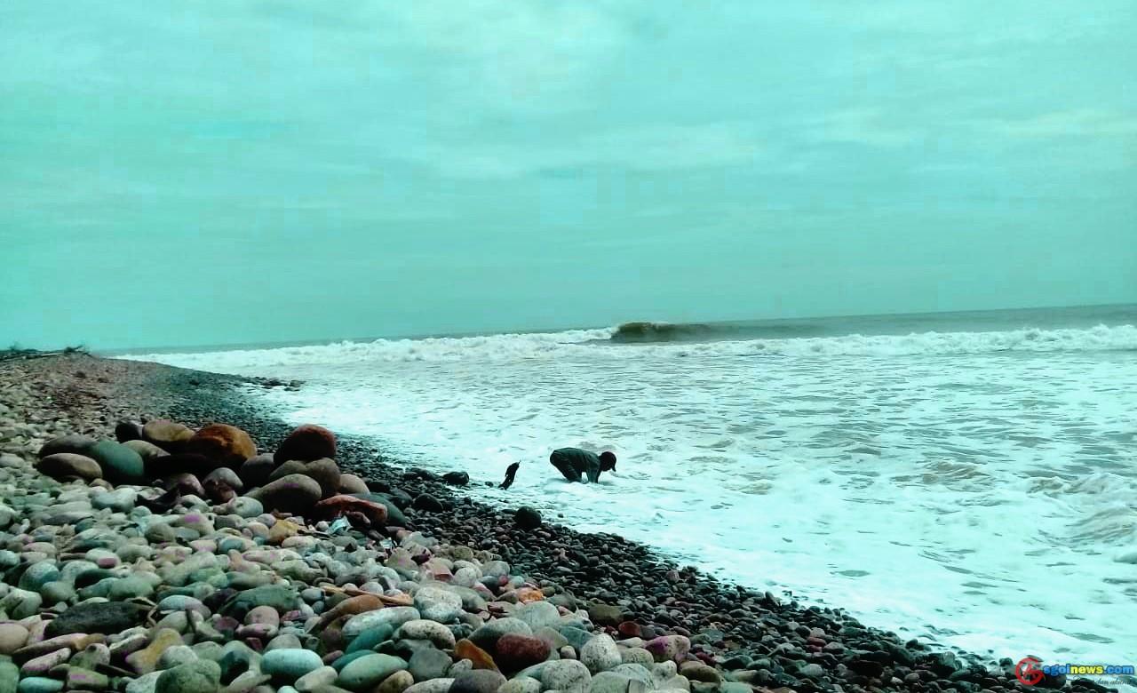 Pesona Pantai Muara Kedurang Bengkulu Selatan
